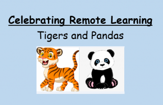 remote-learning-tp